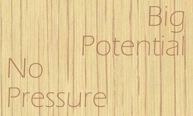 no-pressure-big-potential
